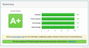 SSL Labs 100%